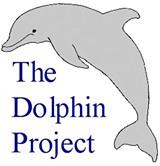 c1fe1dee_tdp.dolphin.sm.jpg