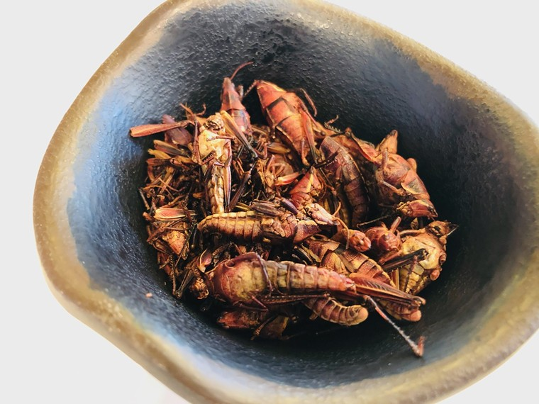 Some call chapulines the protein of the future. - LAUREN DREWES DANIELS