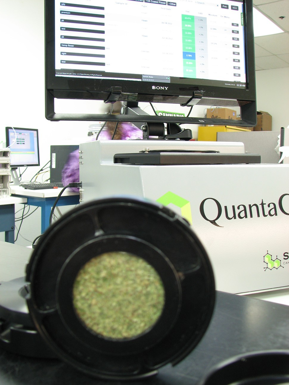 A QuantaCann sample ready for scanning.