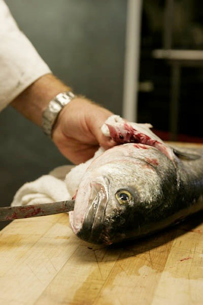 A seared white sea bass dish will be on the menu.