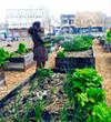 West Oakland Activists Vow to Defend Afrika Town Community Garden