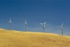 Activists note that large, remote wind farms don't create local jobs.