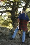 Benney examines a rock wall he suspects  was built      centuries ago by Native Americans.