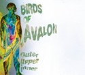 Birds of Avalon