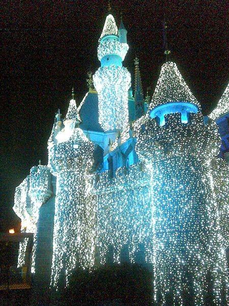 Dems love goin to Disneyland.