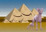 "Detail of Chris Silva's ""Pyramids."""