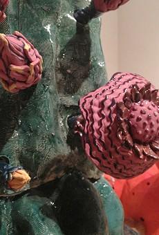 Detail of one of Brük Dunbar's cacti.