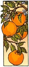 """Detail of Yoshiko Yamamoto's """"Tangerines."""""""