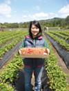 Emily Lee shows off her hand-picked strawberries.