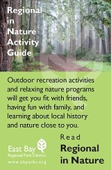 in_nature_activity_guide.jpg