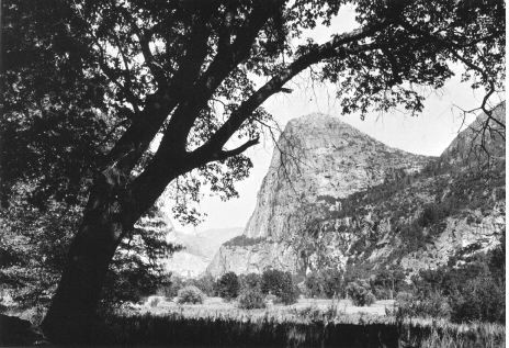 Hetch Hetchy valley before it was flooded.