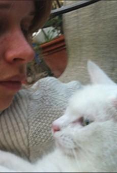 How to Navigate Pet Custody Battles
