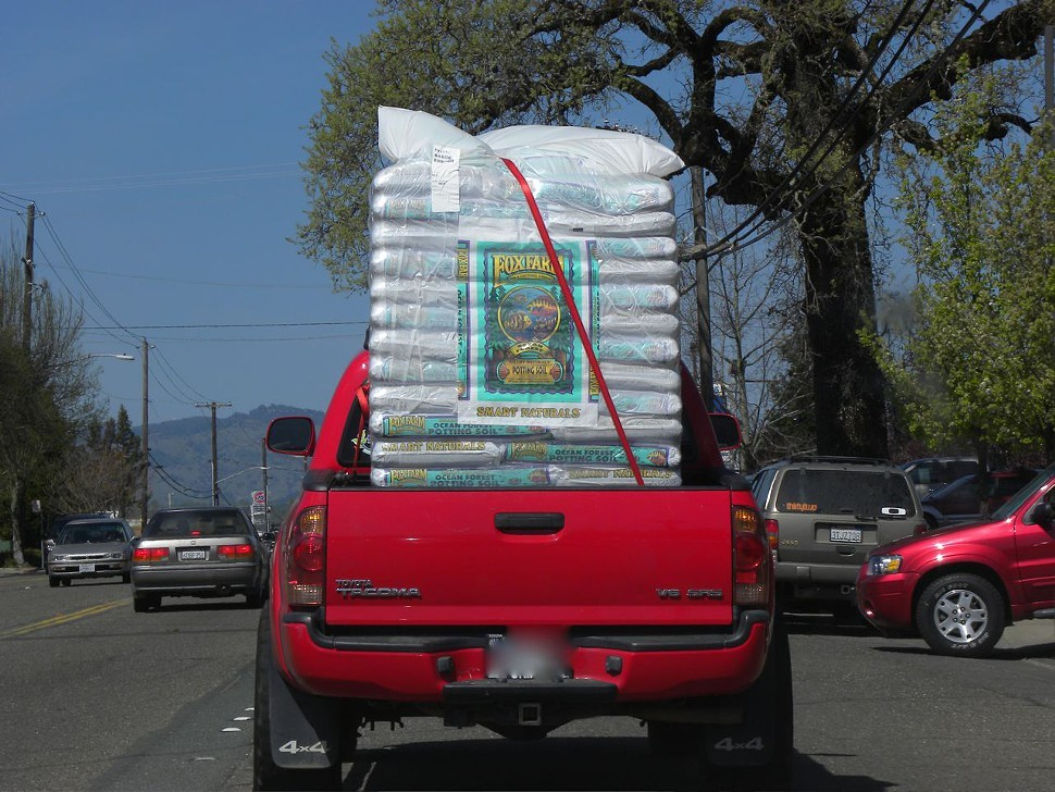 Just another spring day in the Emerald Triangle