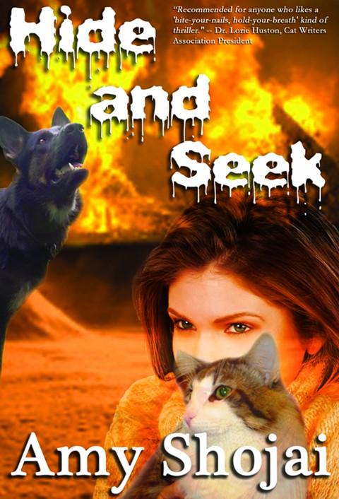 hide_seek.jpg