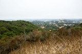 BERT JOHNSON - Knowland Park in the Oakland hills will look and feel dramatically different if the zoo expansion is built.
