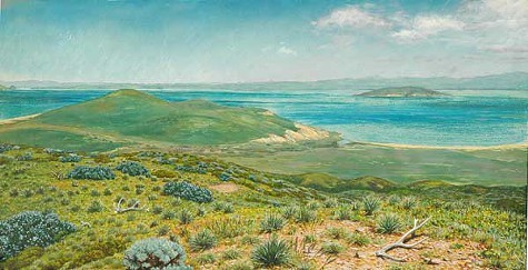 Laura Cunningham imagines the view from Nob Hill, five hundred years ago.