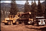 WIKIMEDIA COMMONS - Logging in Sierra National Forest.