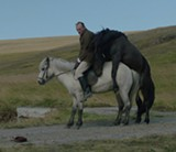 Of Horses and Men reaches heights of sly humor that recall the Coen brothers.