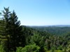 Preservation Ranch is now part of the largest forest owned and logged by a nonprofit in California.