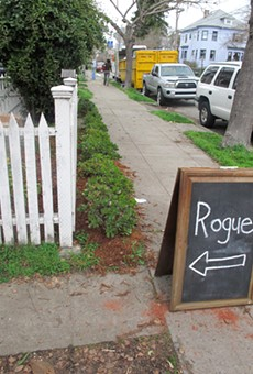 Rogue may not stay in a backyard for long.