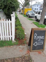 JESSE HIRSCH - Rogue may not stay in a backyard for long.