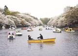 """Rudy Vega's """"Inokashira, Japan."""""""