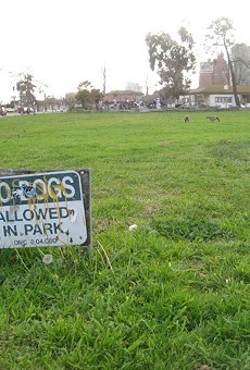 Some opponents of the proposed dog run are concerned about the loss of open space.