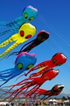 The Berkeley Kite Festival in July always reaches great entertainment heights.
