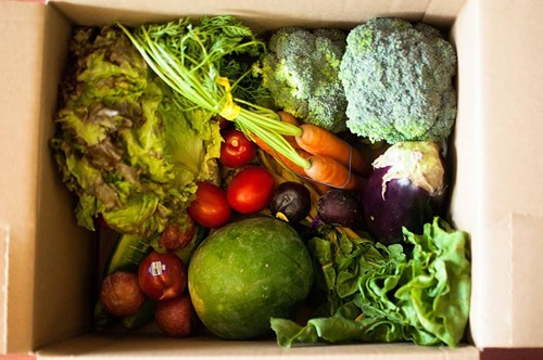 The Box (via Berkeley Student Food Collective)
