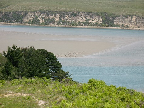 The courts decision means Drakes Estero will become the first marine wilderness on the West Coast.