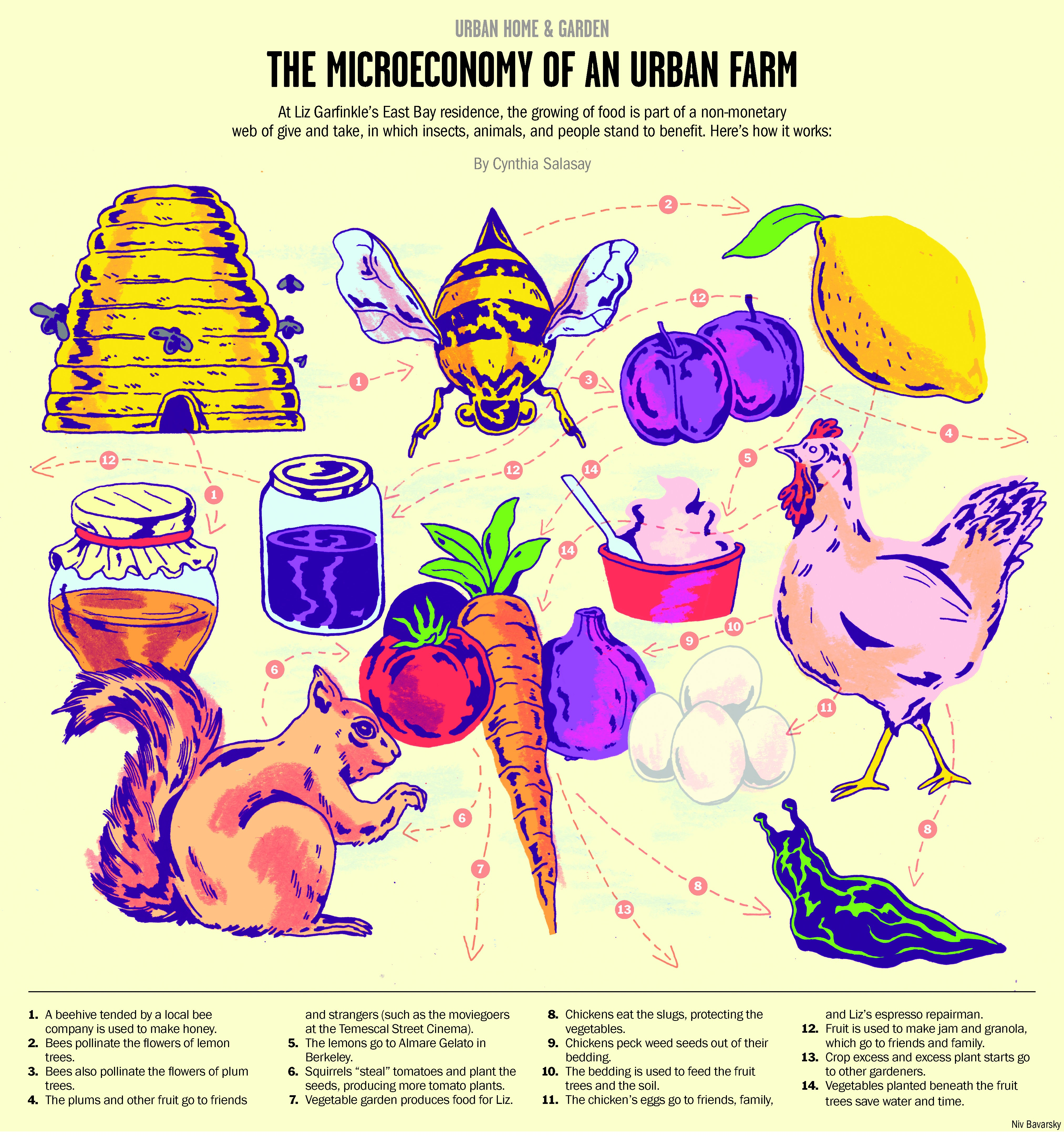 Click To Enlarge The Microeconomy Of An Urban Farm