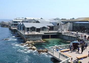 Monterey Bay Aquarium Can Dump Wastewater