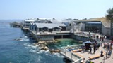 WIKIMEDIA COMMONS - The Monterey Bay Aquarium sits on the protected Pacific Grove area of Monterey Bay.