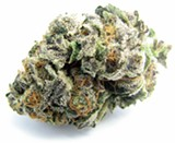 DAVID DOWNS - The scrumptious weed strain Girl Scout Cookies caught fire in 2013.