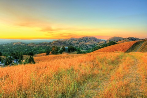 A hike in the East Bay will do you some good, whether you enjoy it or not. - PHOTO OF SHELL RIDGE OPEN SPACE BY JOHN MORGAN/FLICKR (CC)