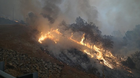 The Camp fire. - PHOTO BY CAL FIRE