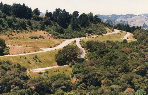 Orinda hillside. - WIKIMEDIA COMMONS