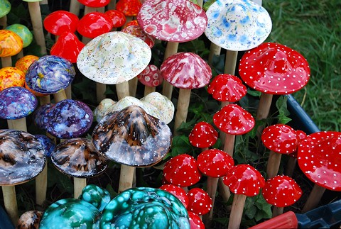 Oakland recently downgraded enforcement of laws agaisnt the consumption of psychedelic plants. - WIKIMEDIA COMMONS