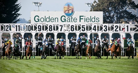 Horse racing in the Bay Area will be put on hold until at least early December. - GOLDEN GATE FIELDS