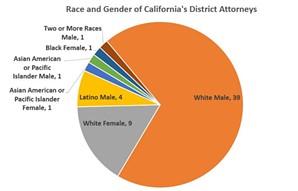 racegenderelecteddasca.jpg