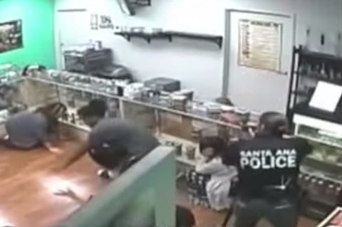 Armed officers point guns at medical marijuana patients in Santa Ana during a controversial raid. - SKY HIGH COLLECTIVE FOOTAGE