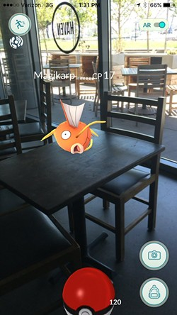 This Magikarp wasn't harmed (via Twitter @havenoakland).