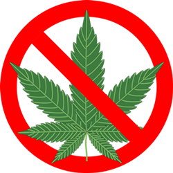 cannabis-1254745_960_720.png