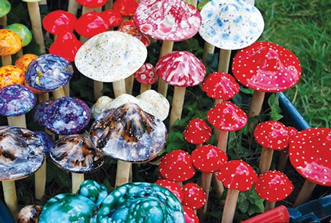 SHROOMS: Oakland recently downgraded enforcement of laws against the consumption of psychedelic plants.