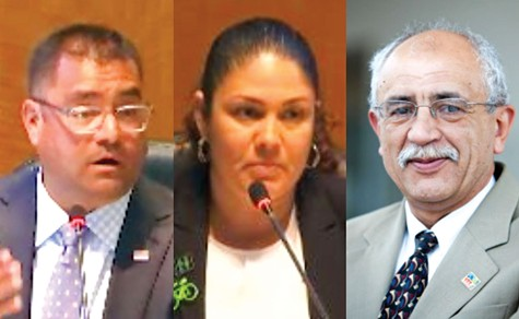 VOTE: Hayward Council-members Mark Salinas, Elisa Marquez and Francisco Zermeno will seek re-election this fall against a field of 10 challengers hoping to win one of four seats on the council.