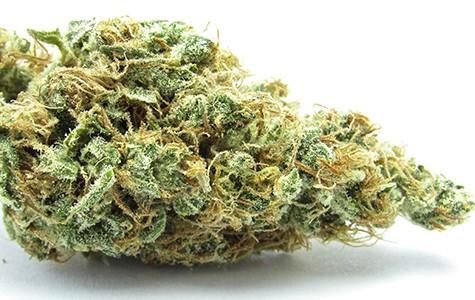 mg_legalize_3734.jpg