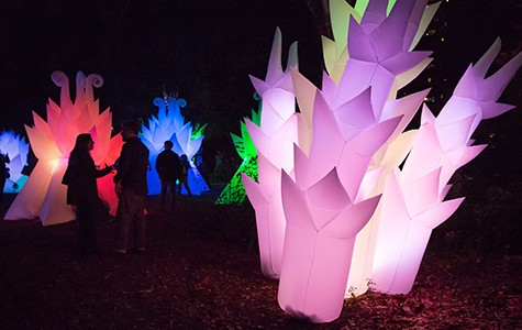 "Stan Clark's ""Astro Botanicals"" will light up The Gardens at Lake Merritt again this year."
