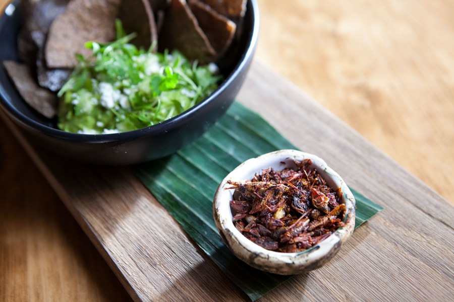Oaxacan chapulines, aka fried grasshoppers. - BERT JOHNSON