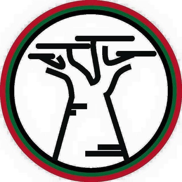 BAOBOB's logo reflects cultural pride.