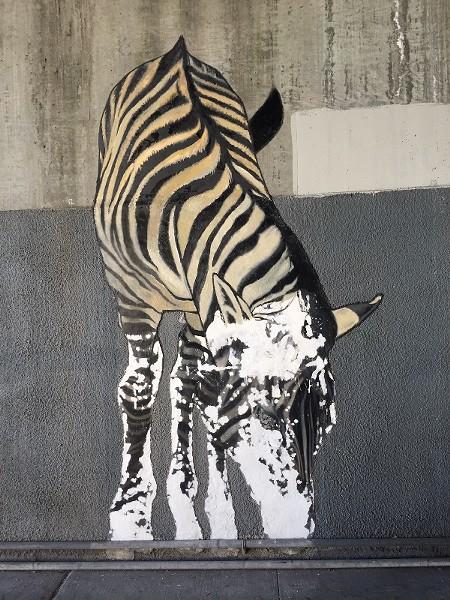 A partially restored zebra. - COURTESY DAN FONTES.